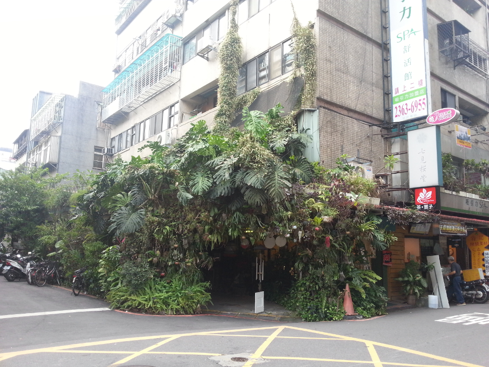 Taipei is a forest too