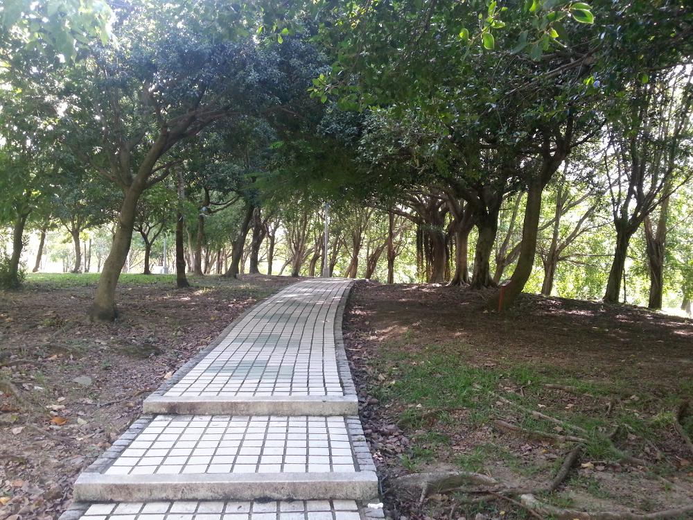 Da'an-parken 4